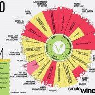 Вино и… одуванчики