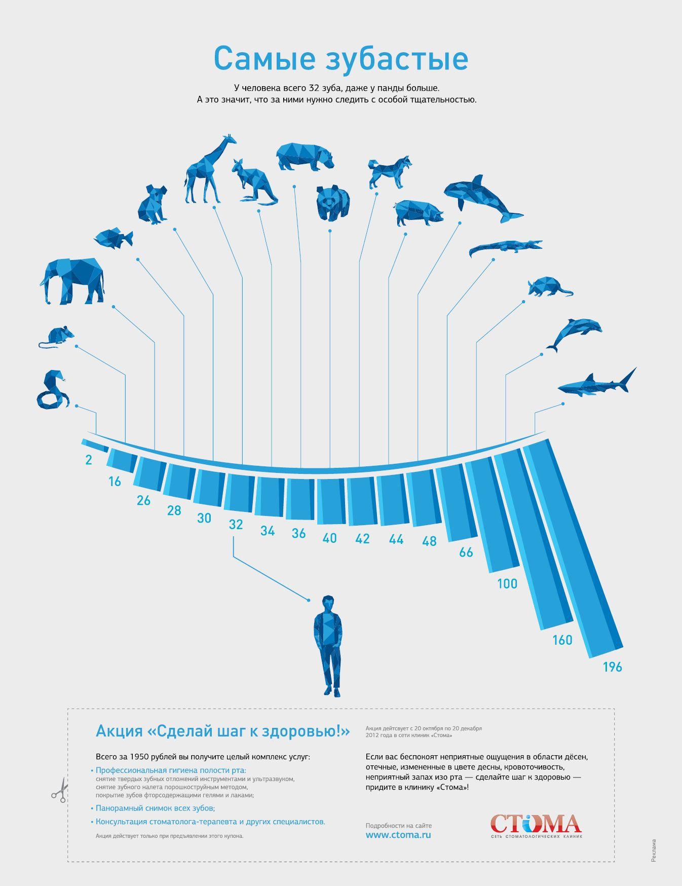 Инфографика: Самые зубастые