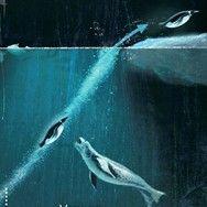 Пингвины жмут на газ